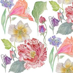 Watercolour Flower Sampler