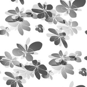 Dark flowers on white background - Fleurs foncées sur fond blanc