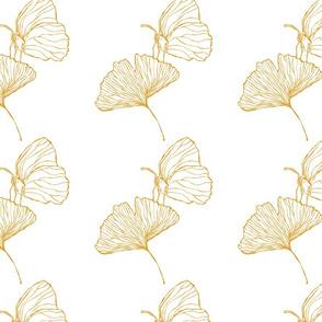 Gingko Golden White