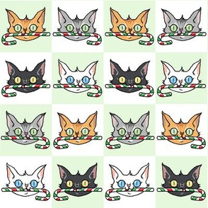 candy cane cats - Small