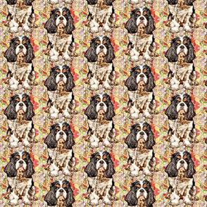 cavalier puppy done
