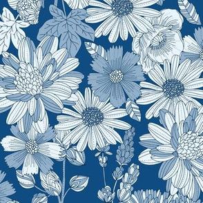 Blue Eleonor