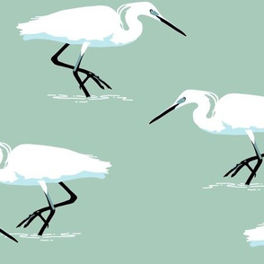 White herons on mint