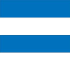 Giant Stripe Blue and White Horizontal