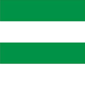 Giant Stripe Green and White Horizontal