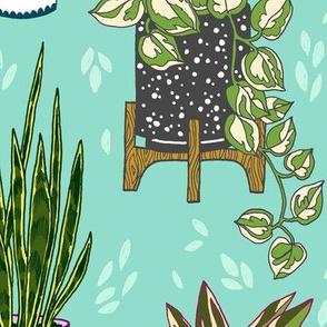 houseplants - large scale turquoise