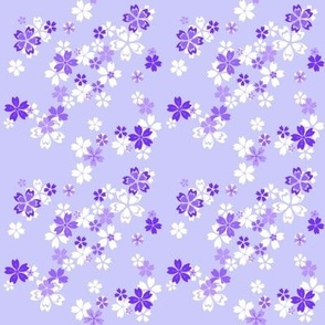 Purple pixie flowers