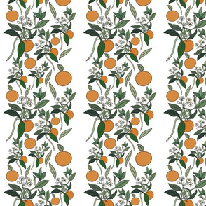 Striped kawaii Victorian oranges