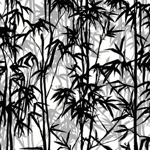 BLACK AND WHITE BAMBOO WITH SHADOWS