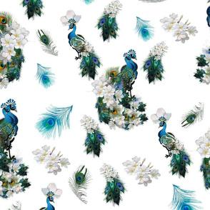 Peacock Fantasy on White