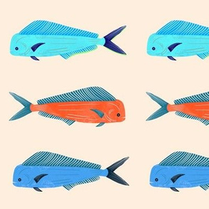 mahi-mahi fish
