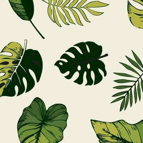 tropical leaves in green on natural