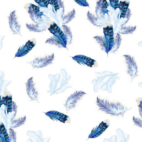 Mix blue feathers on White