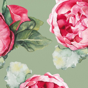 Peony Watercolor Botanical in Sage