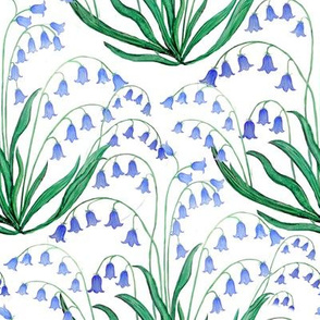 bluebell floral, spring flowers