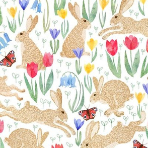 Haring around the spring meadow