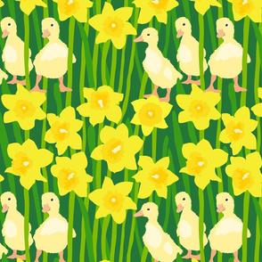 Just Quackers!
