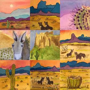 Desert Wild Burro Banners