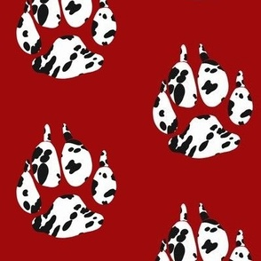 Dalmatian Dog Paw Red background