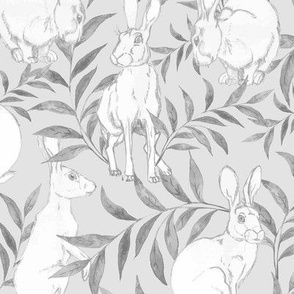 hares in a meadow