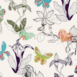 Butterflies & Orchids