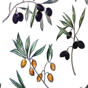 Watercolor Botanical Spring Olives