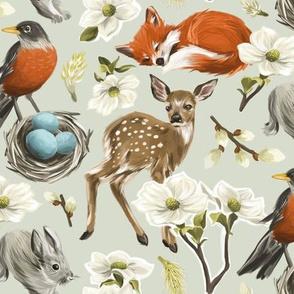 Woodland Spring