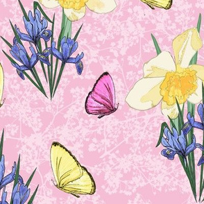 Iris and Daffodils in Spring on Pink