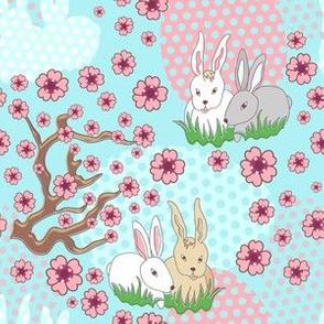 Rabbit bloom spring