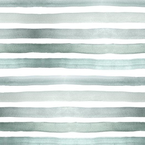 ombre stripe sage 3/4 inch