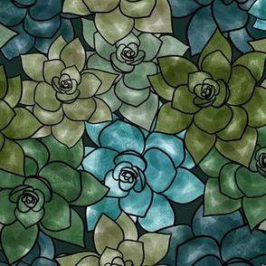 Sea of succulents