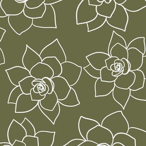 Sea of succulents olive green coordinate