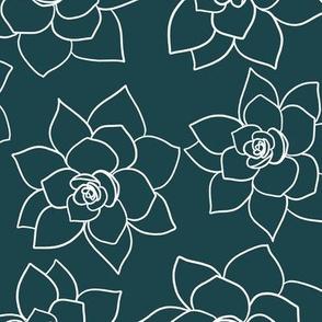 Sea of succulents dark coordinate