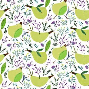 Funny Birds - Medium Green
