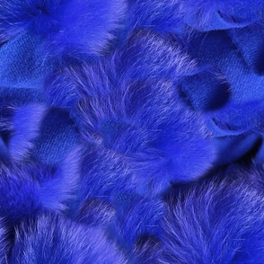Blue Fox and Sheep
