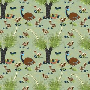 Spring Emus