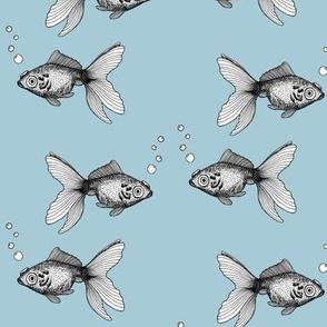 Goldfish on Blue