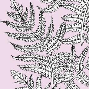Alma Outline // White on Lavender