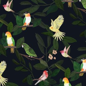 Birds and Foliage