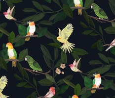 Birds and Foliage