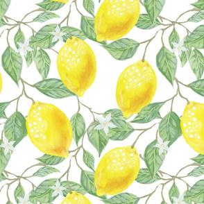 Summer Spring Retro Yellow Lemons