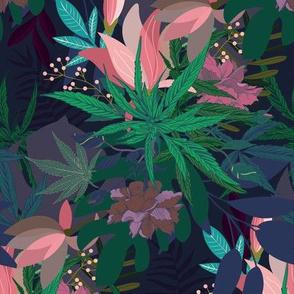 Dark Scattered Cannabis
