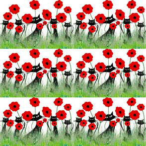 Poppies and Black Cats