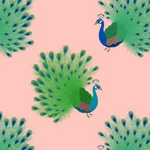Prancing Peacocks