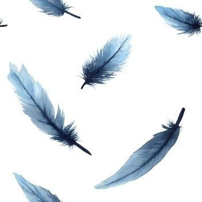 Feathers watercolor