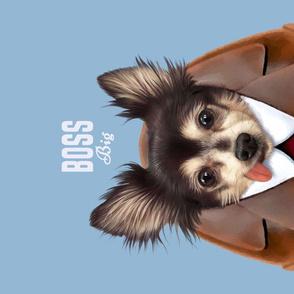 Big Boss Dog.  Funny Animal  Portrait.