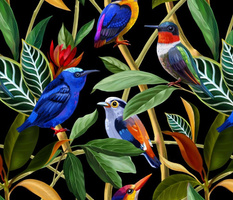 Exotic birds in the rainforest