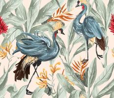 Animalier - Exotic Birds
