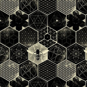 The Honeycomb Conjecture-small-black