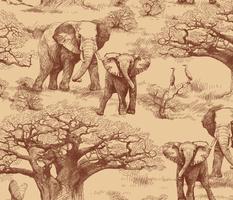 Elephants and Baobab